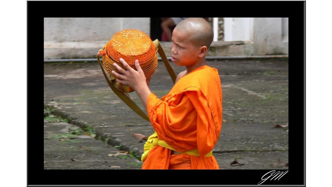 Laos . Novice de Luang Prabang