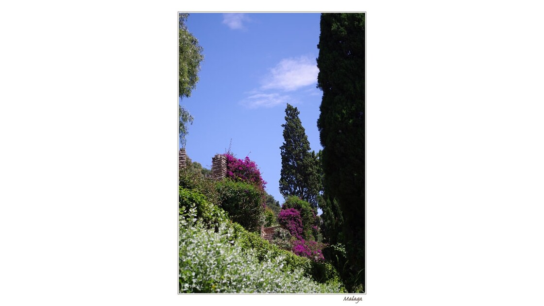 Jardin sur les contreforts de l'Alcazab