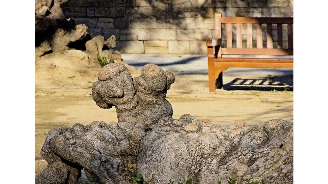 Les troncs taillés en sculptures !!