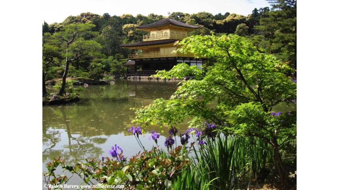 Kinkaku-ji, Kyoto, Japon