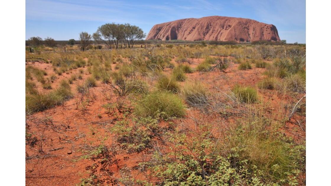 Uluru_01