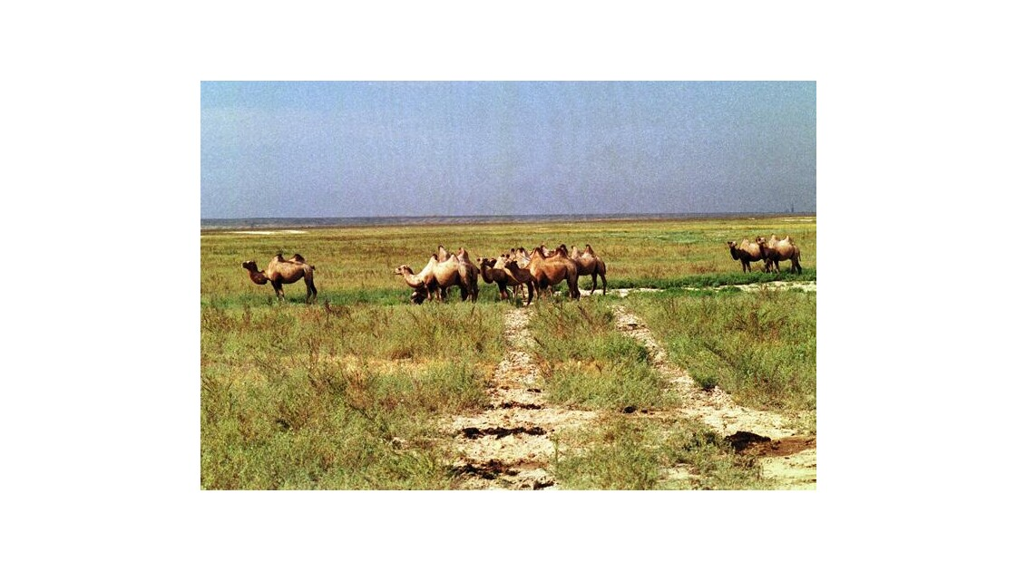 On the Silk Road 1987 - 19