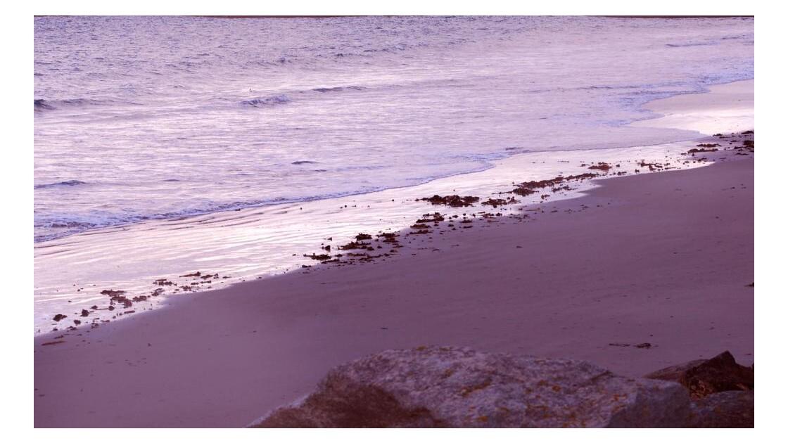 Le rivage, en soirée