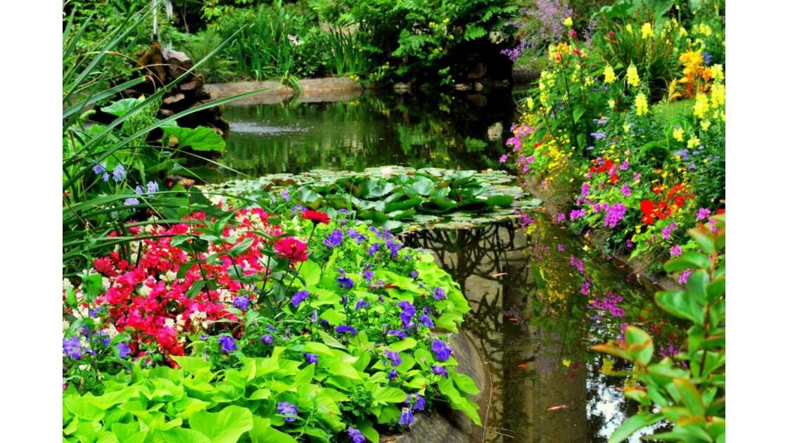 Tout en fleurs.jpg