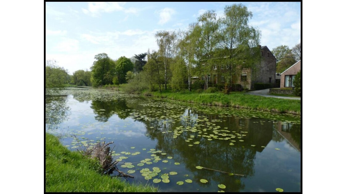 Etang du Hemlot (ancien bras de Meuse)