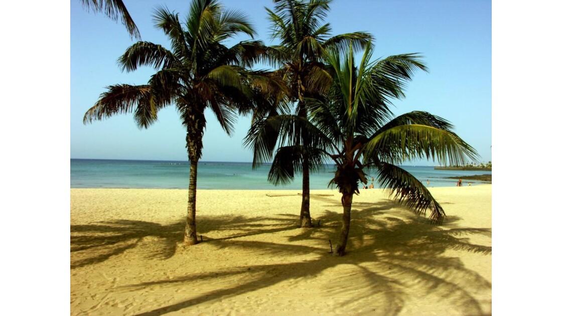 Lanzarote Arrecife.JPG