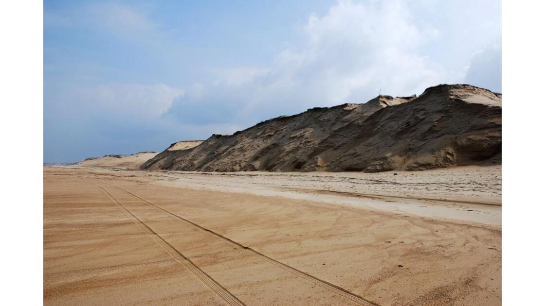 Dunes du littoral landais