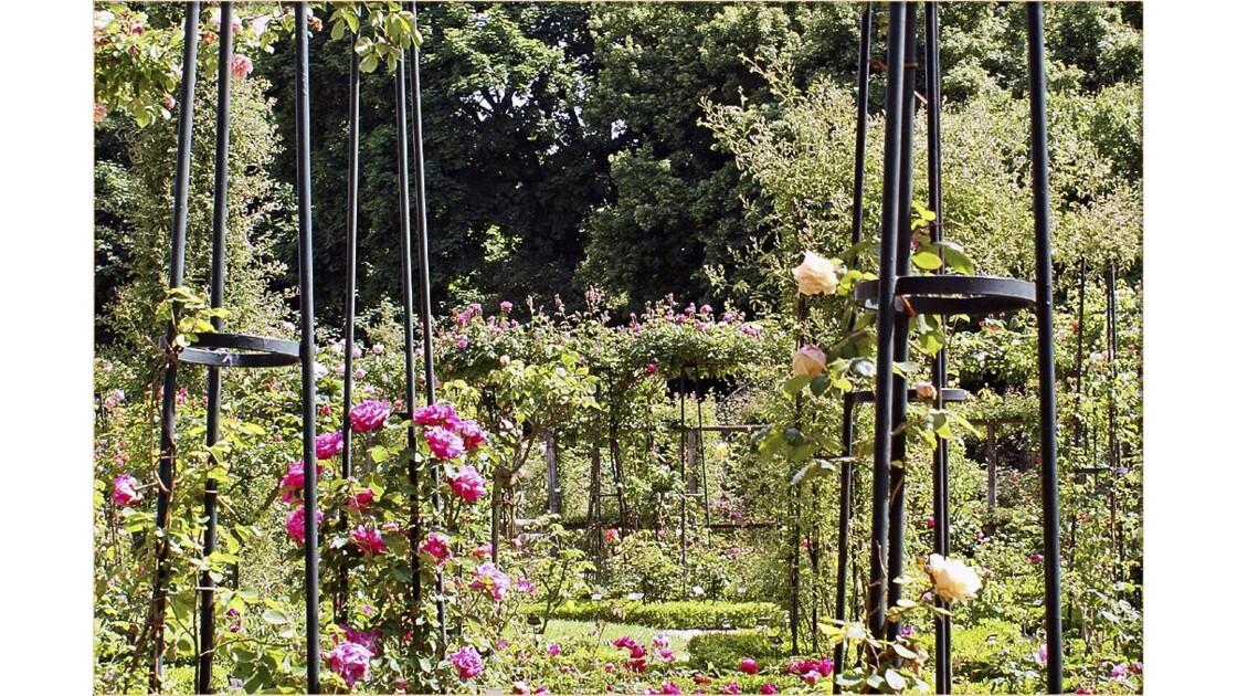 Roseraie de l'Haÿ-les-Roses !