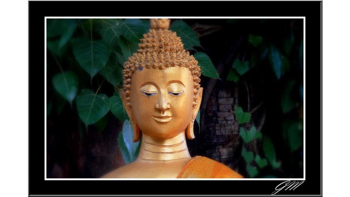 Laos . Boudha.