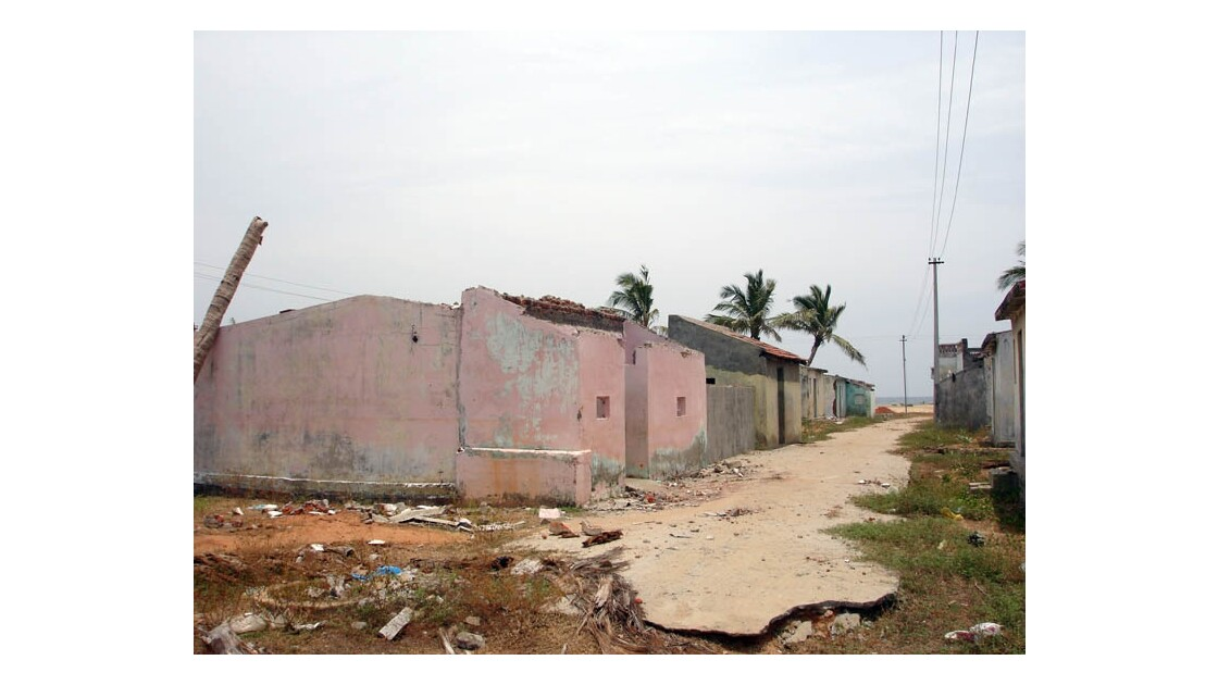Destructions tsunami