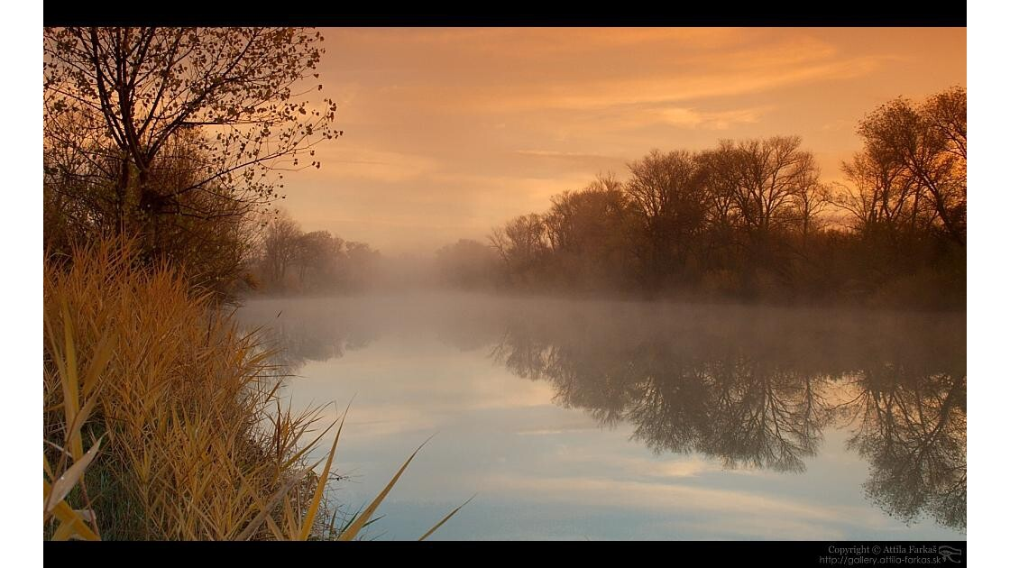 brouillard I