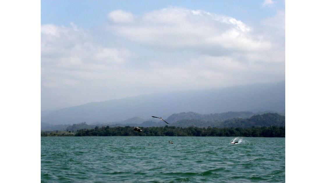 Le lac Izabal .jpg
