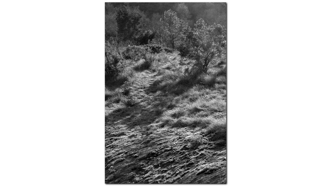 Chemin naturel
