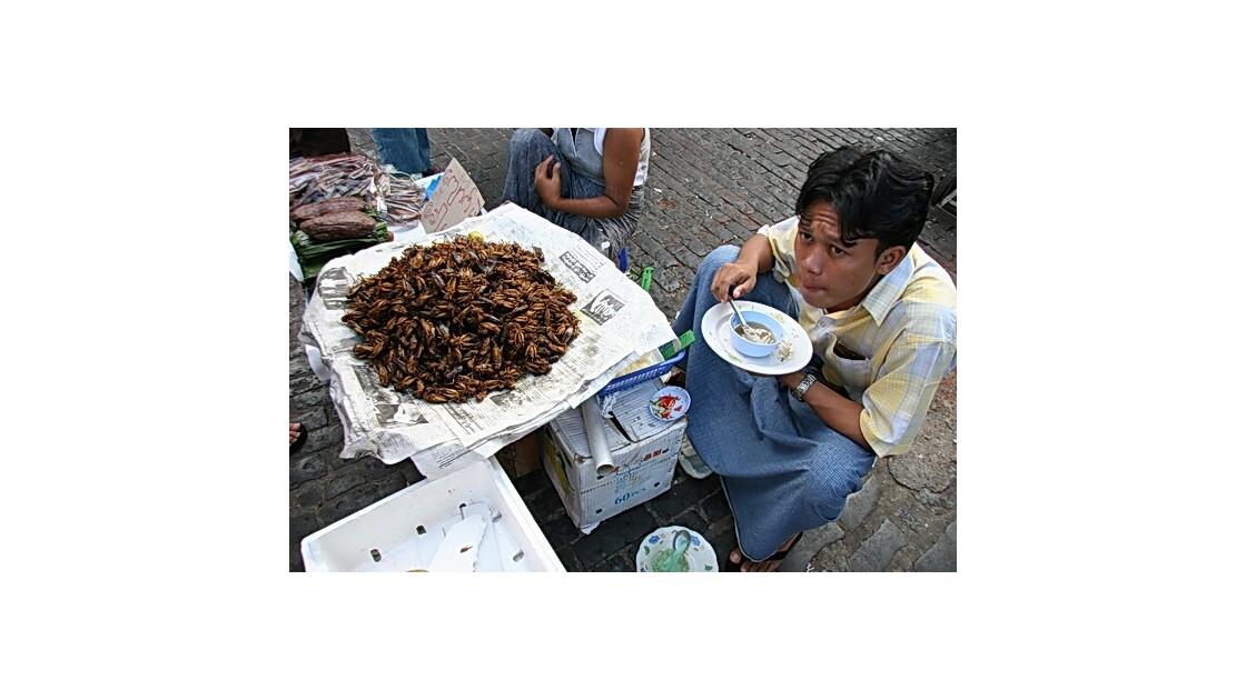 birmanie_portraits_02.JPG