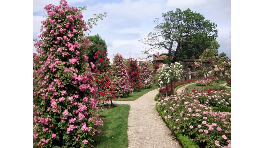 Roseraie de l'Hay-les-Roses
