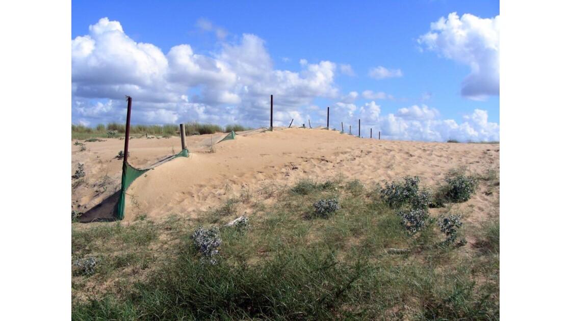 Dune - Ligne de filet à sable