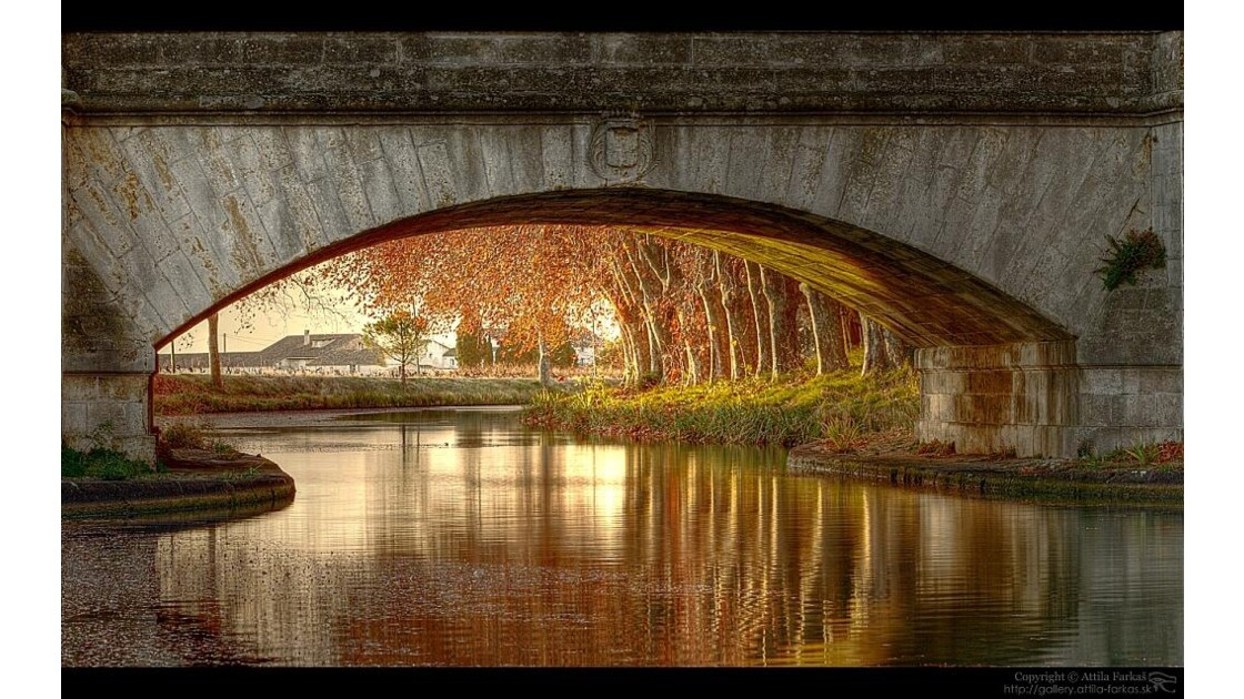 Pont I