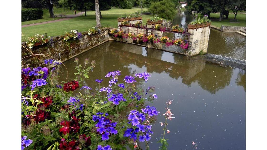 Rivière aux rembardes fleuries 0457