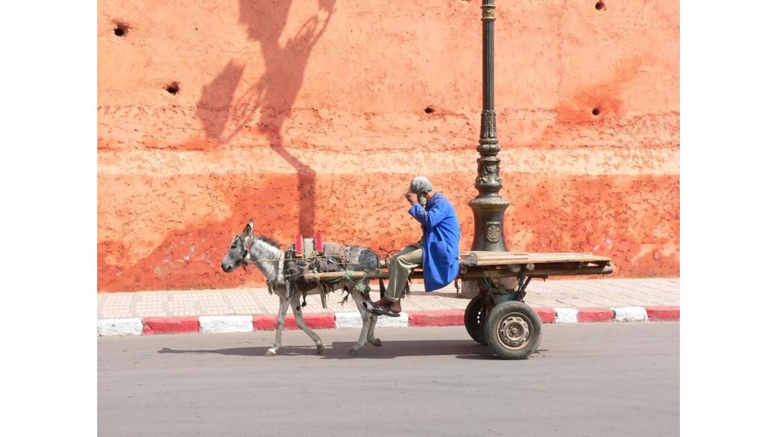 dans les rues de marrakech maroc 4