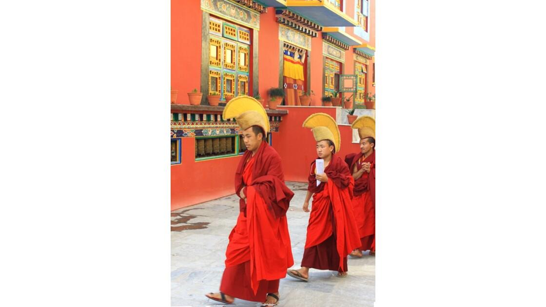 Procession des moines Shechen 3