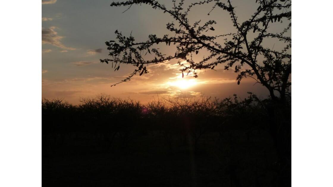 Dans le désert Afar
