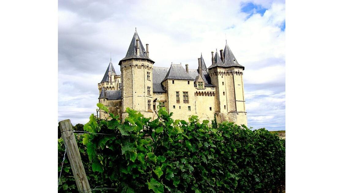 Saumur : château dans les vignes
