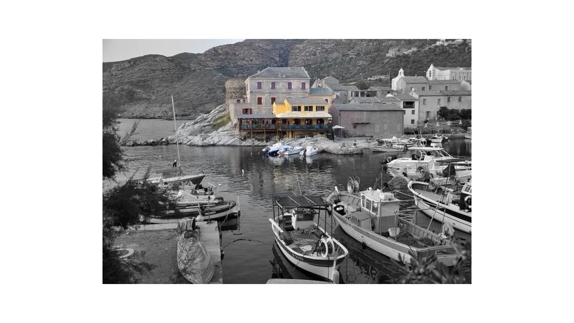 Cap Corse - Port de Centuri