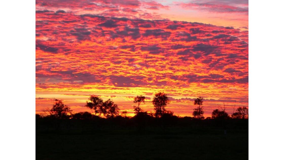 lever du soleil dans le bush-australie39