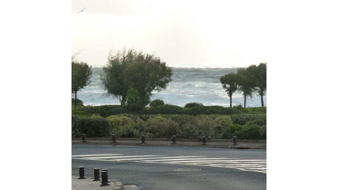 L'océan dans la ville