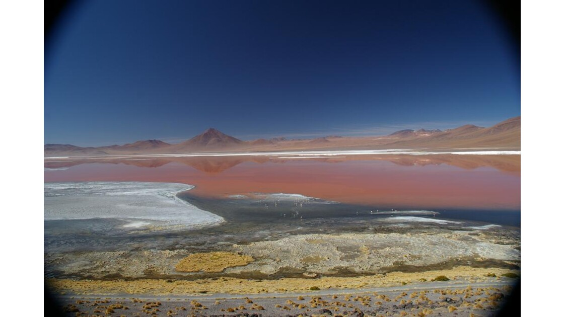 Laguna Colorada,