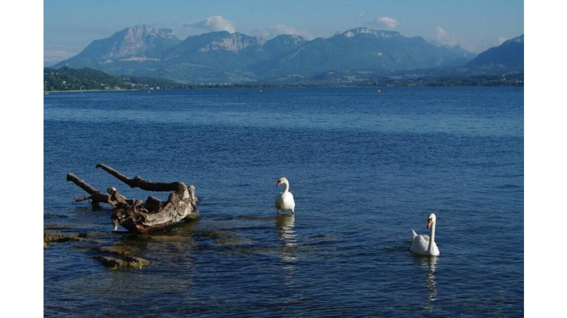 lac du Bourget vu d'Aix les Bains.