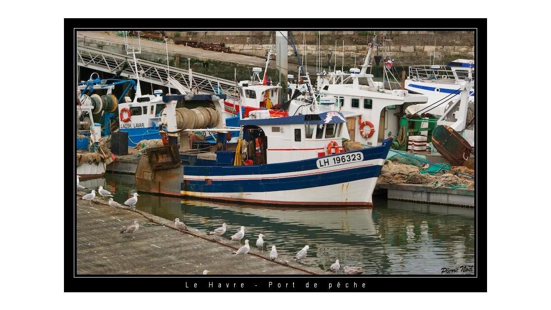 Le Havre - Port de pêche