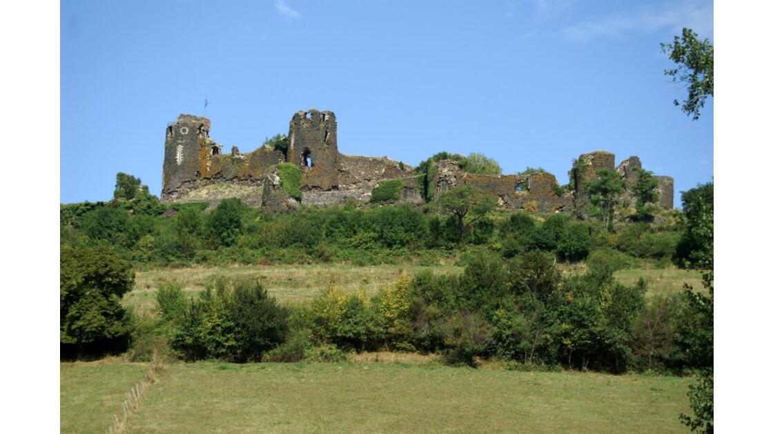Château et Arbres