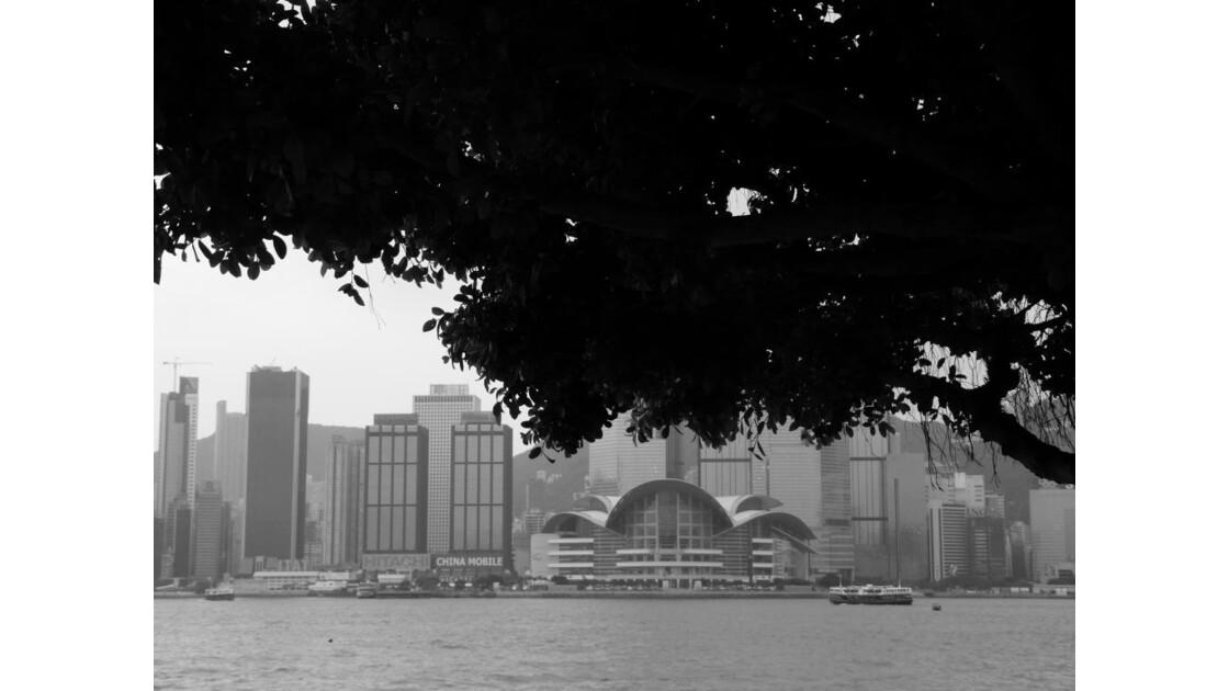 BAIE DE HK