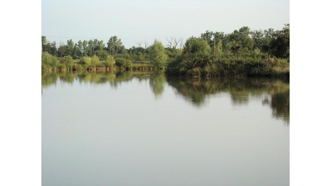 sur un étang du Forez