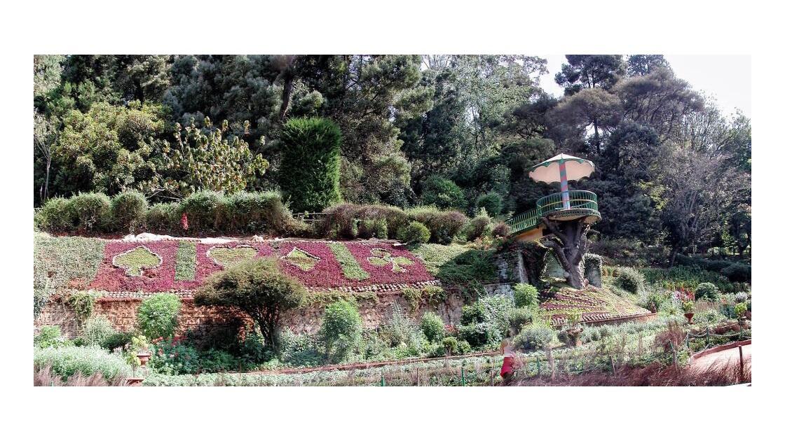 jardin botanique OOty