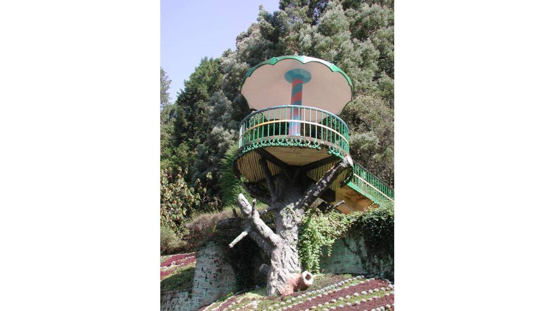 mirador jardin botanique ooty