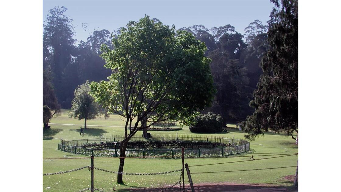 vue pelouse jardin botanique