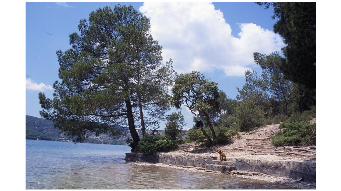 Lac d'Esparron de Verdon1.jpg