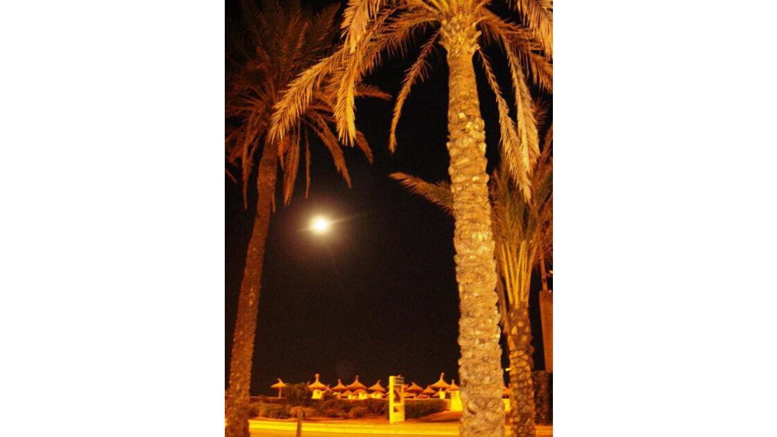 Flash sur la  lune