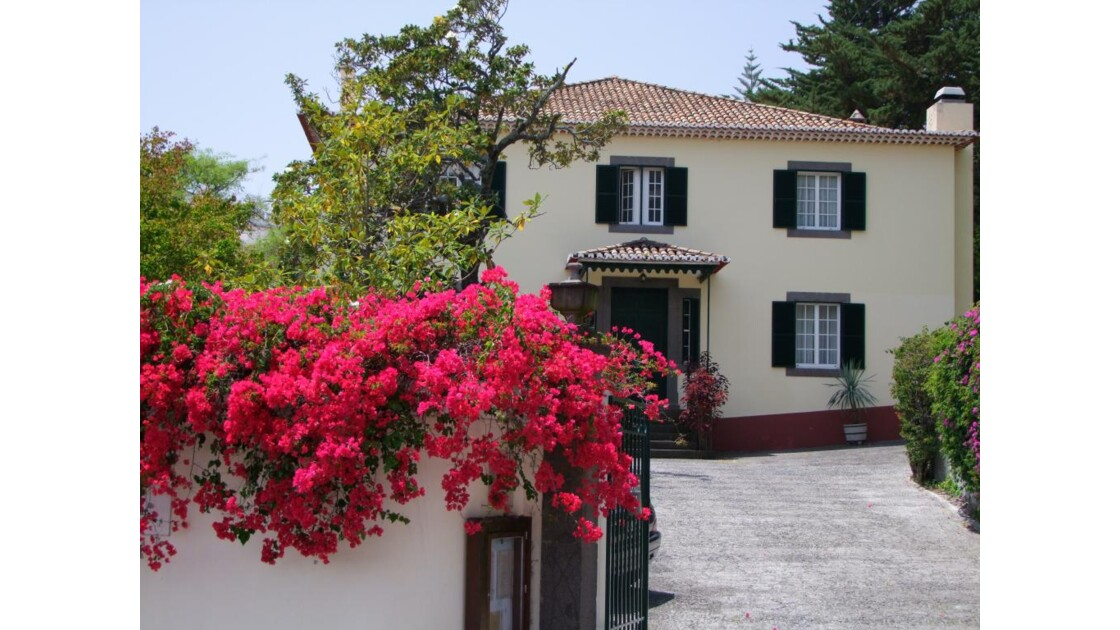 Madère Funchal face Quinta do Sol.JPG