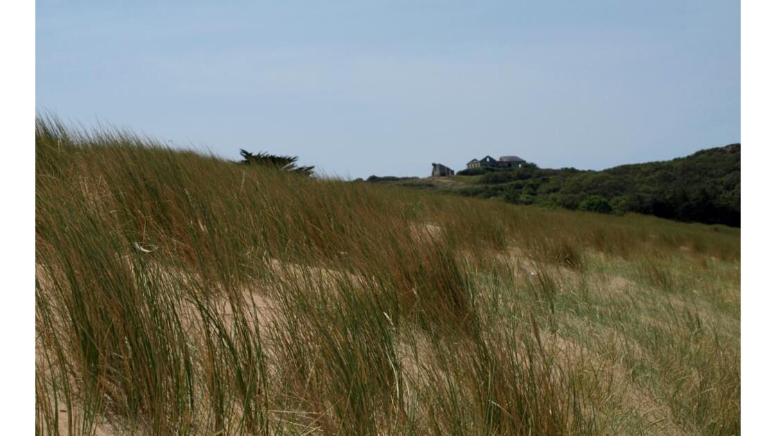 Un dune