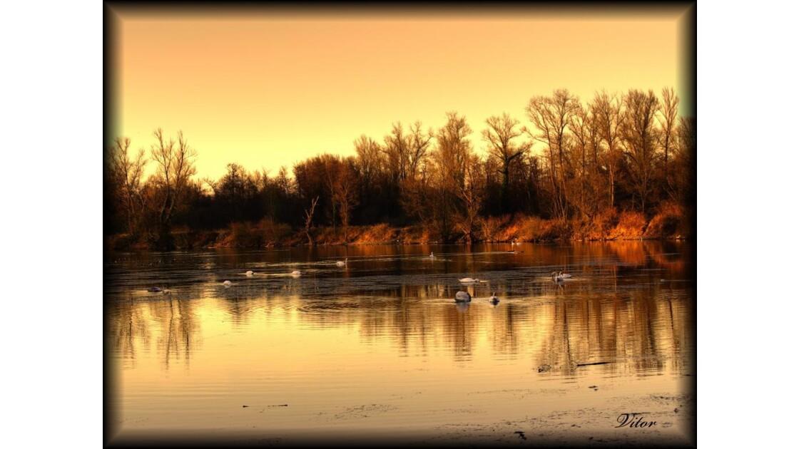 Lac aux Cygnes