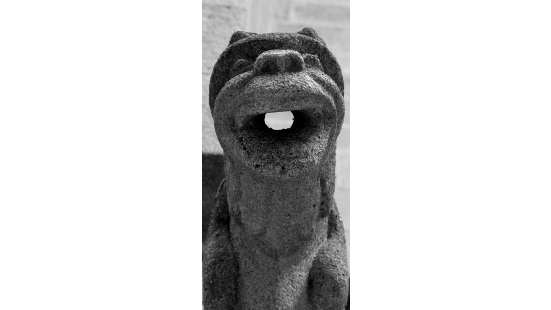 Gargouille de la Cathédrale de Quimper