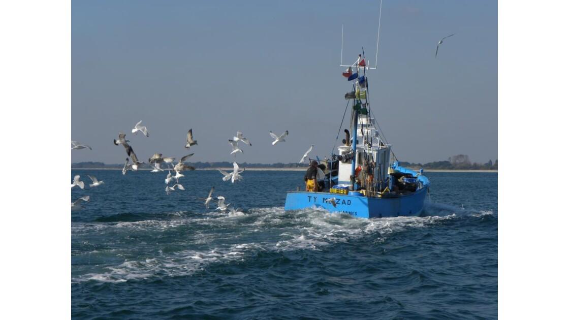 Retour de pêche_Oct_09_413.jpg