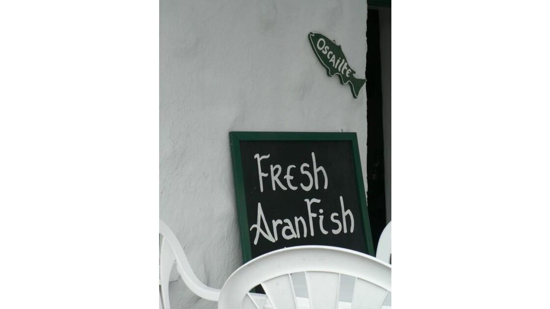Fresh Aran Fish.JPG