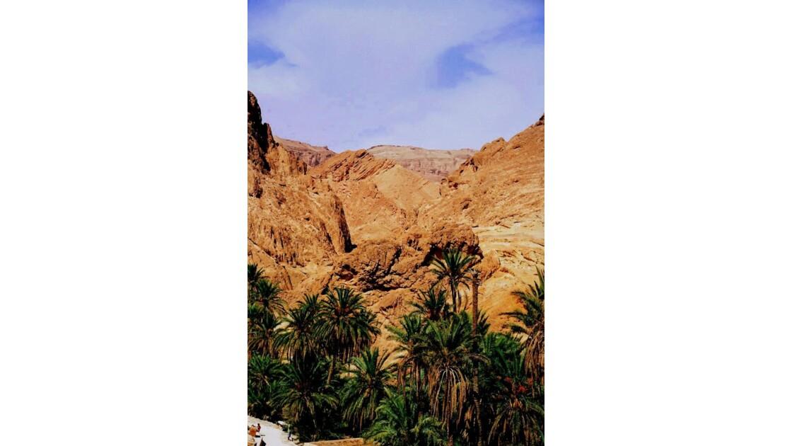 oasis_Chebika.JPG