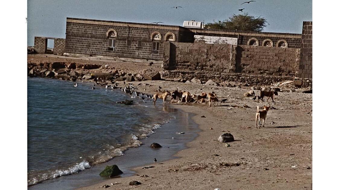 30-10 le Yémen
