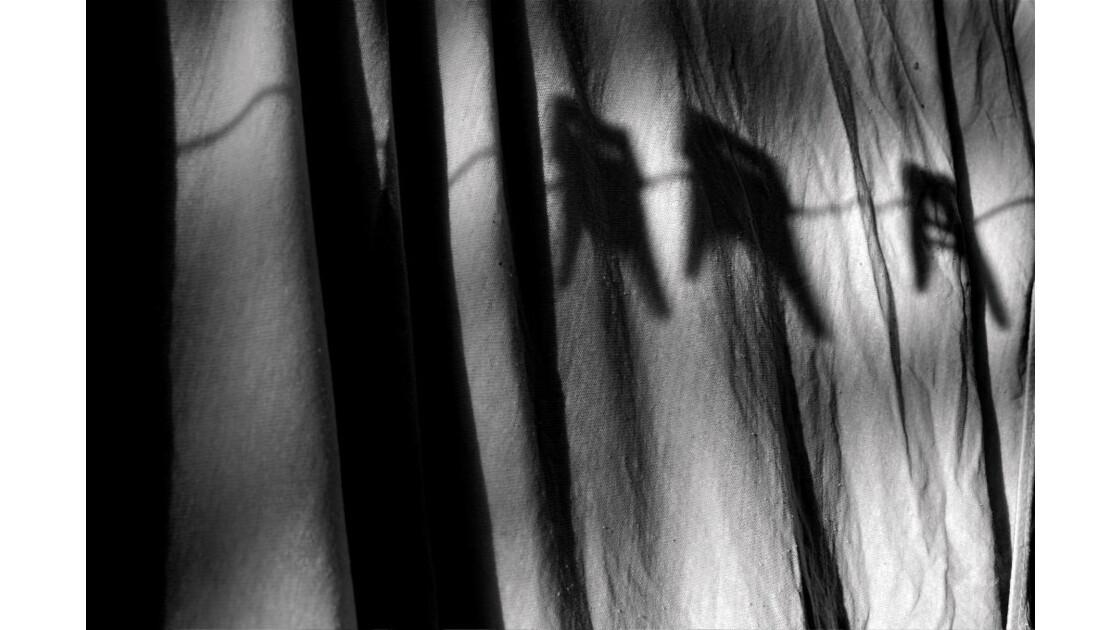 ombres_rais_31.jpg