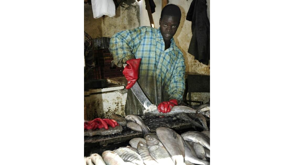 poissonnier au travail à Nouadhibou